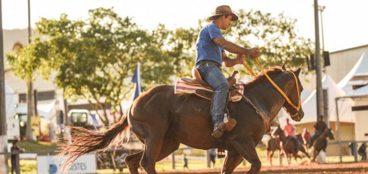 Com novidades, ExpoSul Rural 2020 será realizada em abril