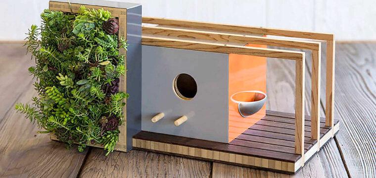 Obras arquitetônicas para casinhas de passarinhos