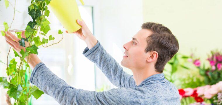 11 atitudes simples para sua casa funcionar de um jeito mais sustentável