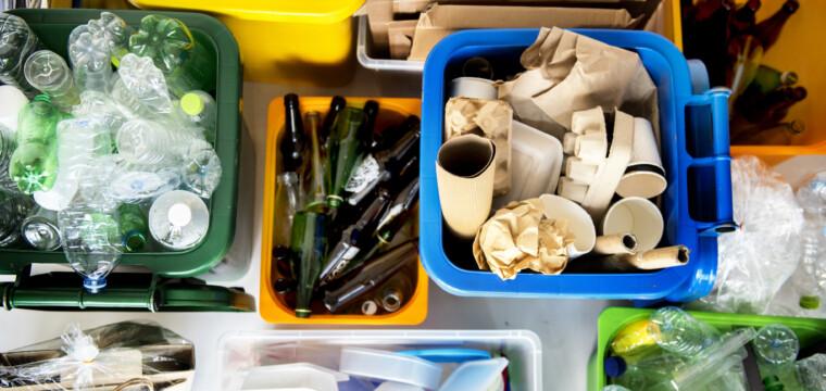 Procon celebra o Dia do Meio Ambiente com dicas de consumo sustentável