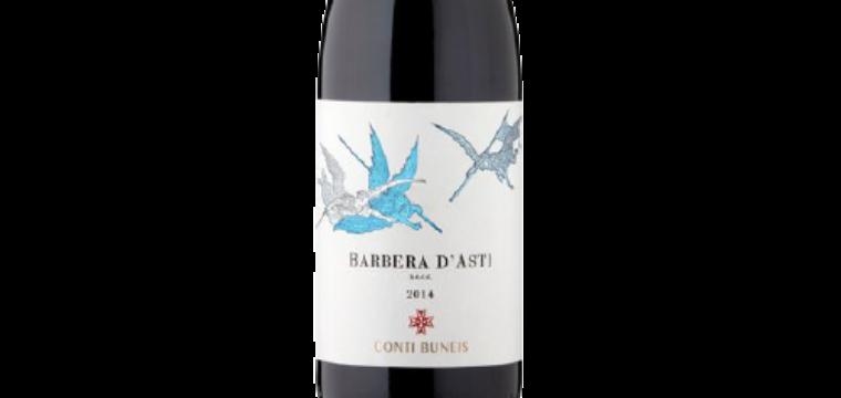 Barbera um vinho italiano